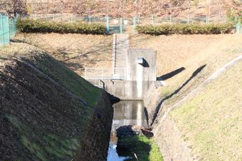 柳瀬川の源流