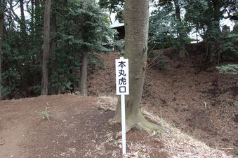 滝の城の本丸跡地#383483
