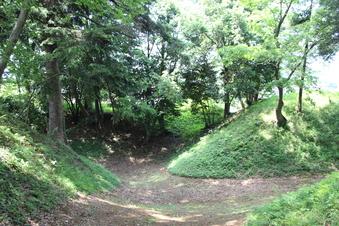 滝の城の本丸跡地#383543