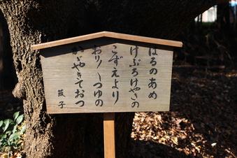 三ヶ島葭子の歌碑(中氷川神社)#383702
