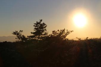 荒畑富士から見える絶景#385711