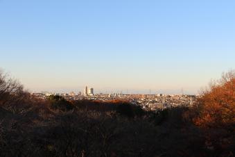 荒畑富士から見える絶景#385713