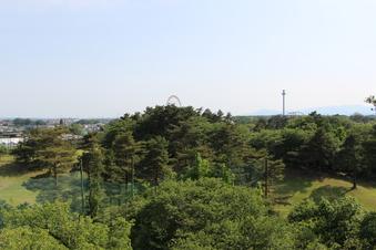荒畑富士から見える絶景#385703
