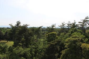 荒畑富士から見える絶景#385704