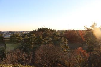 荒畑富士から見える絶景#385707