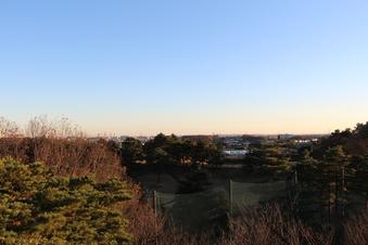 荒畑富士から見える絶景#385708