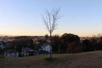 ドレミの丘公園から見える景色#385725