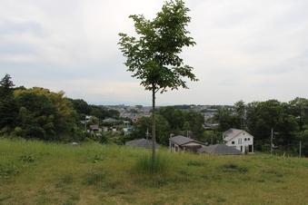 ドレミの丘公園から見える景色#385719