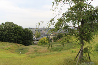 ドレミの丘公園から見える景色#385720