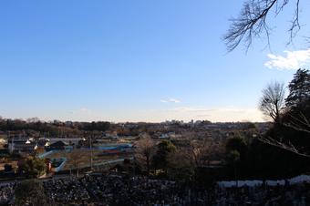 東福寺から見える景色