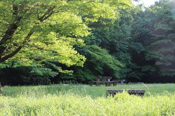 八国山緑地ほっこり広場