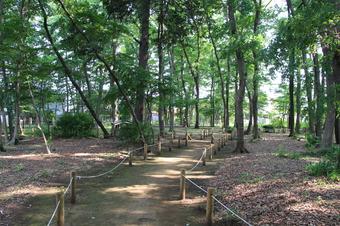 若狭山の神市民の森