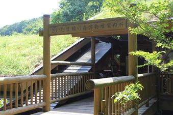 さいたま緑の森博物館#386087