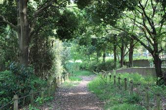 さいたま緑の森博物館#386052