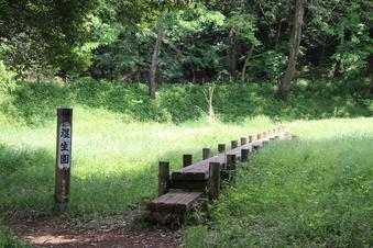 さいたま緑の森博物館#386054
