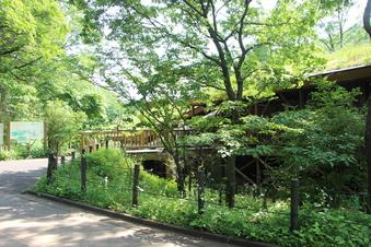 さいたま緑の森博物館#386061