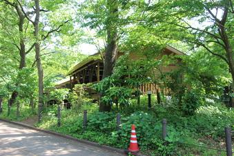 さいたま緑の森博物館#386069