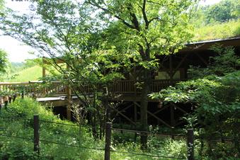 さいたま緑の森博物館#386070