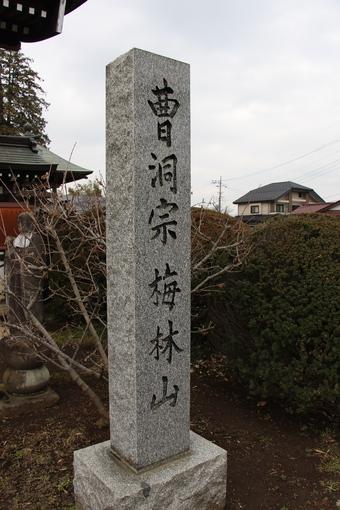 全徳寺の梅#387320