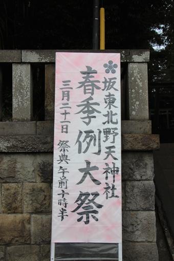 北野天神社の梅#387326
