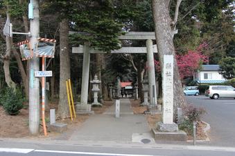 北野天神社の梅#387338