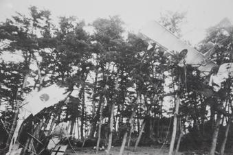 所沢航空発祥記念館#387721