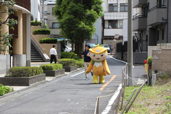 いきなりトコロン