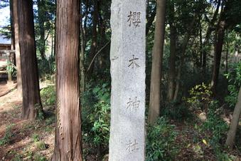 新桜木神社#388735