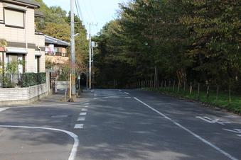 新桜木神社#388736
