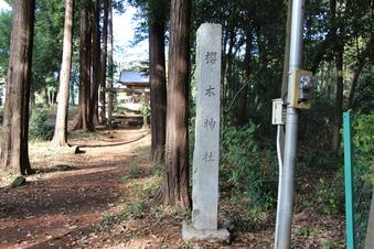新桜木神社#388727
