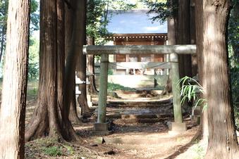 新桜木神社#388728
