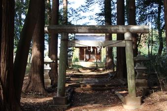 新桜木神社#388729