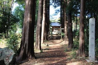 新桜木神社